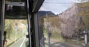 180408比叡山3.jpg