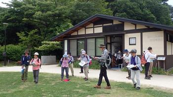 190528鎌倉広町緑地.jpg