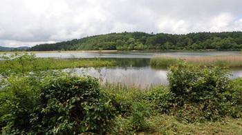 190710女神湖2.jpg